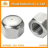 Stainless Steel 304/316 Fastener Hex Cap Nut DIN917