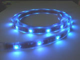 5050 LED Strip/ 5050 SMD Strips/ Waterproof LED Strips
