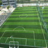 High Quality Material Grass for Standard Football Soccer Field