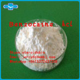 Local Anesthetica Benzo Hydrochloride Powder Benzo HCl
