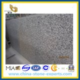G439 Bianco Taupe Granite Slab for Kitchen Countertop
