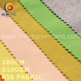 Polyester Rib Knitted Fabric for Garment Textile (GLLML491)