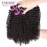 Factory Price Brazilian Virgin Hair Extension