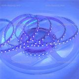Ultraviolet SMD LED Strip Lighting with High Lumen