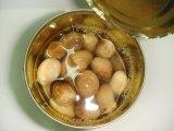Canned Straw Mushroom by Tin