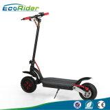 Foldable Two Wheels 48V 1000W Dual Battery Dual Motor off Road Kick Scooter