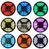 12V Single Color Flexible LED Strip (ST-5050-12-30-02)