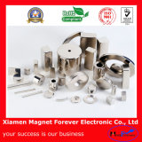 Custom Various Permanent Neodymium (NdFeB) Magnetic Assembly