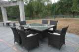 Outdoor Furniture (FSS-1642)
