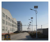 Solar Street Light with LED/Sodium Light Source