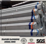 Low Price Fence Panels Pre Galvanized Steel Pipe with Coupling