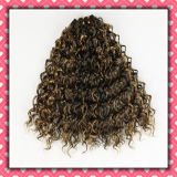 Cheap Price Brazilian Hair Weft Curly Hair 16inches