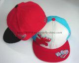 Hiphop Flat Short Brim Hats Custom Baseball Hat (DH-BF025)