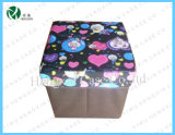 New Hot Sale Storage Box (HX-S1105)