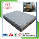 Comfort Sleep Well Pocket Spring Mattress