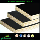 High Quality, Hardwood, Phenolic Glue Film Faced Plywood with Black, Brown, Yellow and Red Film for Construction Usage