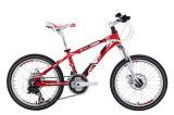 Bicycle (KSBL1071) 5