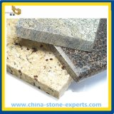 Colourful Natural Stone Granite for Flooring / Wall Tile (YQG-GT1009)
