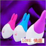 Rechargeable Vibrating Egg Vibrating Male Love Sex Toy