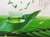 Natural Taste Green Tea