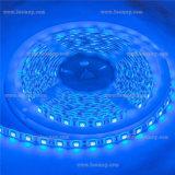 Hot Sale LED Lights SMD 5050 Flexible LED Strip Light
