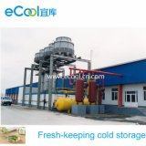 Large Cold Room for Vegetables and Fruits Processing Factory