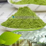 Natural Dehydrated Barley Grass Powder