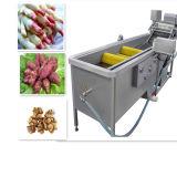 Brush Type Vegetable and Fruit Washing Equipment