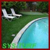 Soft Green Grass for Poolside Decoration