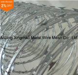 China Supplier Lower Price Concertina Razor Barbed Wire/Hot Dipped Galvanized Razor Wire