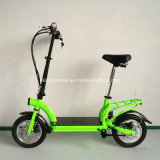 F/R Disc Brake 36V300W E Scooter High Speed Hummer City Electric Bike