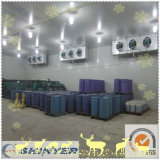 Explosion Proof Dangerous Products Cold Storage