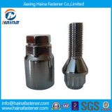 Customized Bolts and Nuts Black Auto Fastener