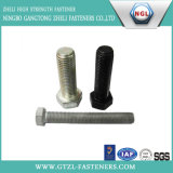 DIN931 Hex Head Bolt with Black