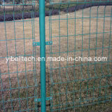 Professional of Wire Mesh Fencing/Welded Wire Mesh Fence