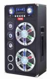 Protable DJ Active Speaker Wireless Speaker A10