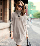 Women′s Cashmere Dress with Turtle Neck (13brdw061-1)