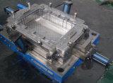 SGS Plastic Container Molding
