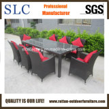 Good Quality Garden Furniture Rattan (SC-B8849-BB)