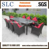 Good Quality Garden Furniture Rattan (SC-B8849-BB)
