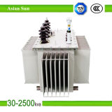 High Quality Oil Immersed Power Transformer up to 2500kVA 10kv
