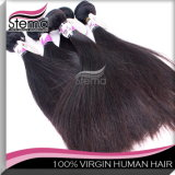 New Arrival Natural Color Remy Straight Virgin Indian Hair Wholesale