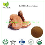 Best Ganoderma Extract Powder at Low Price