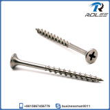 Stainless Steel Drywall Screw, Philips Bugle Head, Coarse Thread