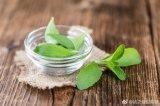 100% Natural Stevia Leaf Extract (80%~97%%Steviosides)