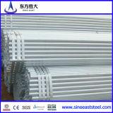 Pre Galvanized Steel Pipe for Greenhouse