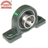 Supply High Quality Replacement Pillow Block Bearing