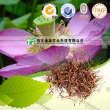 Herbal Treatment Lotus Stamen Nelumbo Nucifera Gaertn