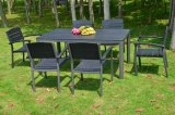 100% Plastic Wood for Outdoor Furniture Park Furniture with Table