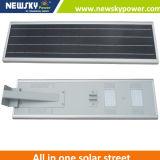 New Design 30W Solar Power LED Lamp